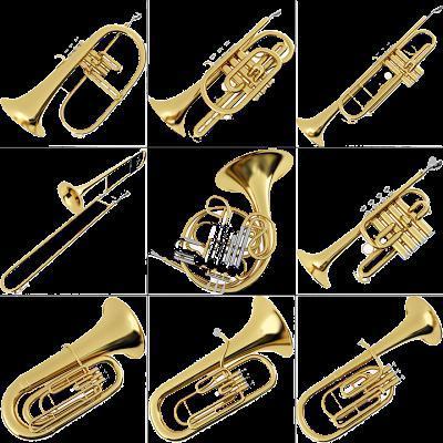 Самые длинные музыкальные трубы