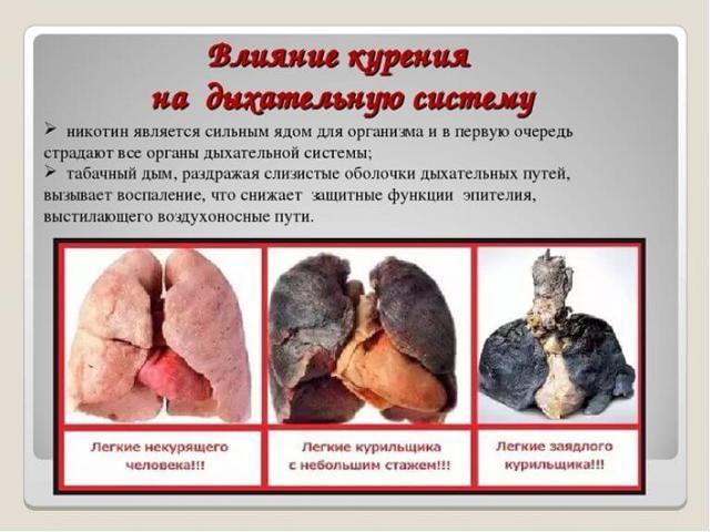 Сигариллы из трубочного табака