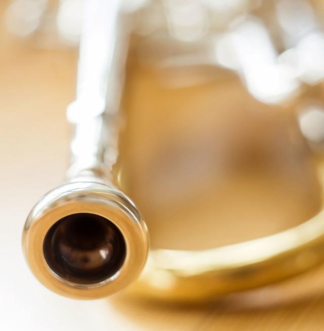 Уход за духовой трубой